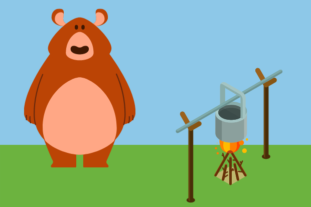 An illustration of a bear with a pot over a campfire