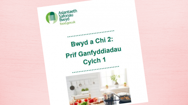 Food and you welsh cover