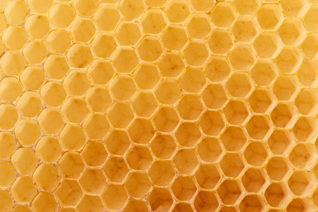 Honey authenticity